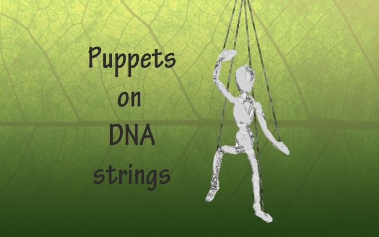 Puppets-Jen-Wyman-Clemons